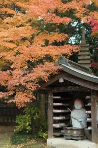 本土寺 お地蔵さんと紅葉