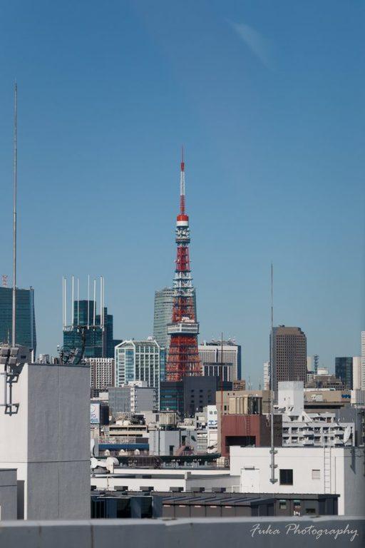 首都高速から見た風景 東京タワー