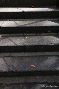 本土寺 石段 紅葉