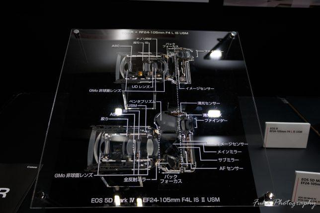 cp+ 2019 CANON EOS R と EOS 5D Mark IV のカットモデル