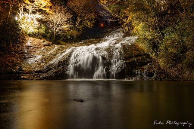 養老渓谷 粟又の滝 ライトアップ