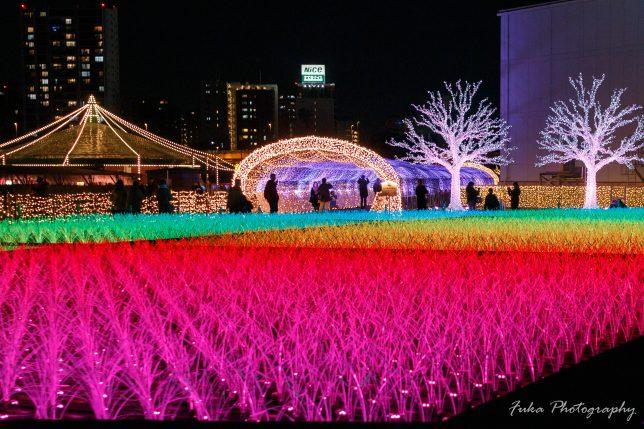 東京メガイルミネーション 大井競馬場