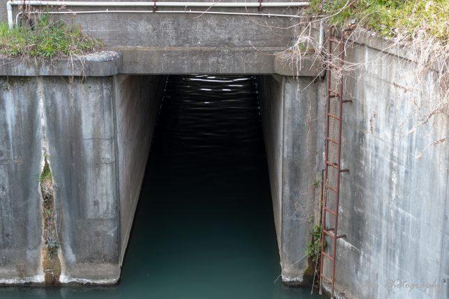 坂川と江戸川の合流地点(?)